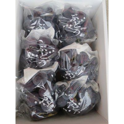画像2: ピオーネ(6房入)2kg箱×1箱