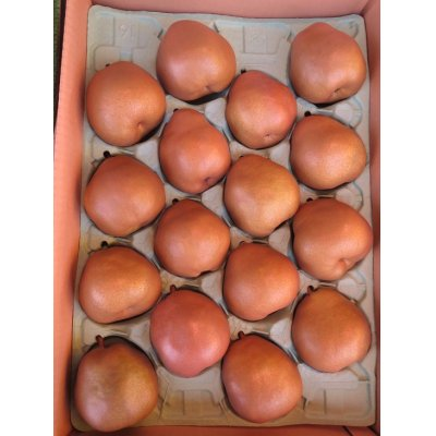 画像1: ゴールドラフランス16玉×1箱(5kg箱)