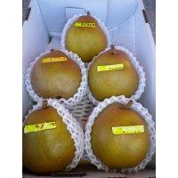 ゴールドラフランス5玉×3箱(2kg化粧箱)