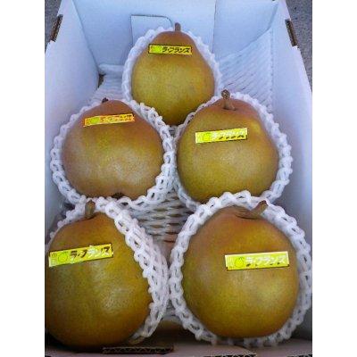 画像1: ゴールドラフランス5玉×1箱(2kg化粧箱)